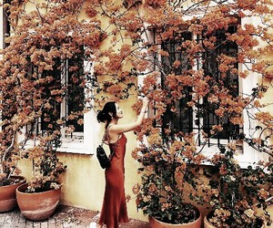 autumn, flowers, and girl image