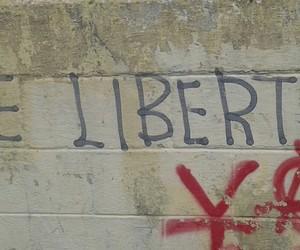 liberdade, expressão, and pichação image
