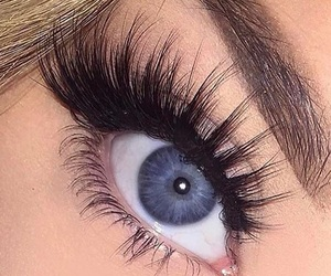 eyelashes and lashes image