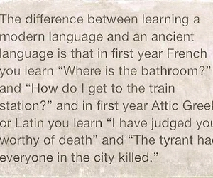 funny, languages, and latin image