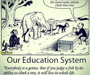 american and education system image