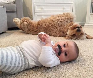 baby, love, and dog image