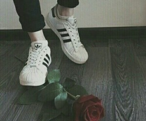 rose, adidas, and shoes image