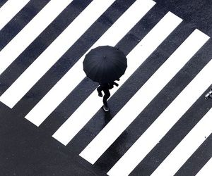 black, umbrella, and black and white image