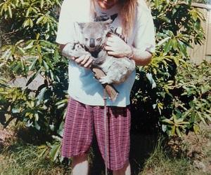 axl rose, Guns N Roses, and Koala image