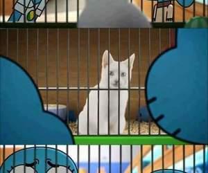 cartoon network, cartoons, and cats image