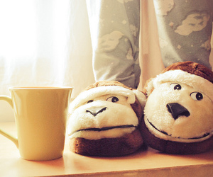 monkey, slippers, and cup image