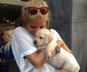 dog, puppy, and girl image
