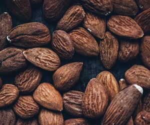 brown, food, and hazelnuts image