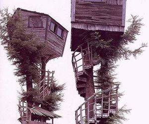 tree house, house, and tree image