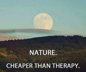 nature, therapy, and moon image