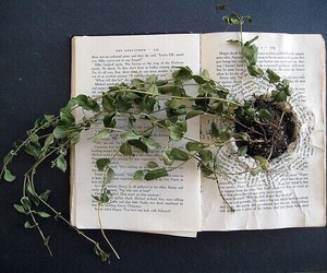 book, plants, and grunge image