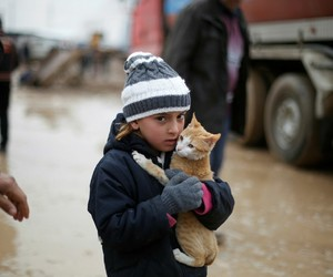 cat, islam, and kids image