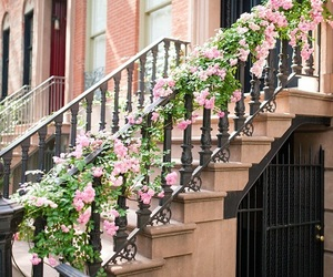 flowers, home, and outside image
