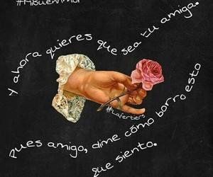 canciones, mon laferte, and mi buen amor image