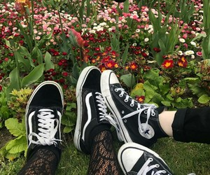 converse, fishnets, and plants image