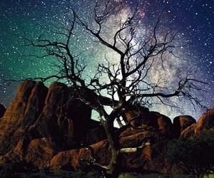 galaxy, lone tree, and tree image