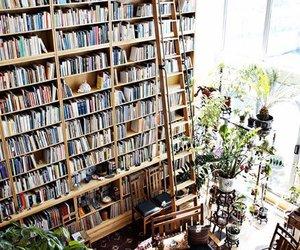 beautiful, books, and Dream image