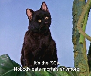 90s, sabrina the teenage witch, and salem image