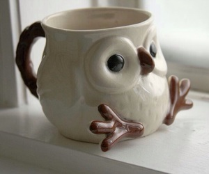 owl, cup, and mug image