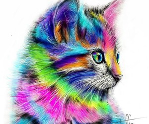 drawings, inspiration, and rainbow image