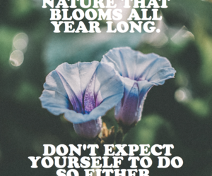 bloom, yourself, and year long image