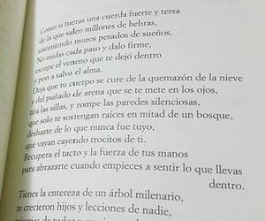 vanesamartín and mujeroceano image