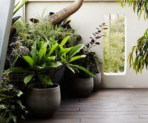 design, terrace, and garden image