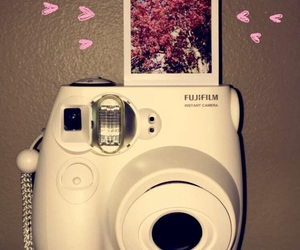 aesthetic, camera, and flowers image