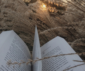 book, outdoors, and photography image