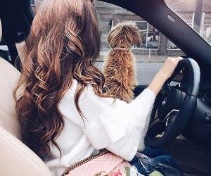 car, dog, and girl image