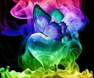 heart, butterfly, and colorful image