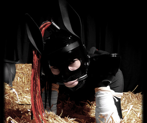 fetish, ponyplay, and petgirl image