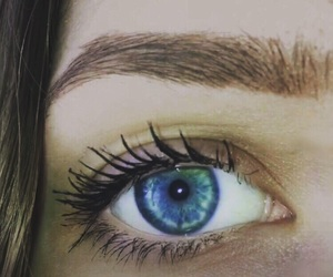 blue eye, blue eyes, and brown image