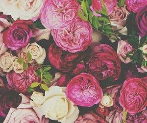 flowers, wallpaper, and cute image