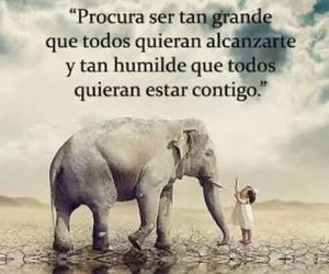 vida, grande, and humilde image