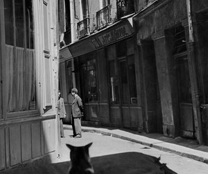1952, black and white, and france image
