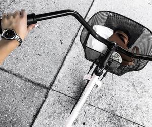 bike, girly, and photography image