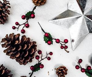 berry, christmas, and holly image