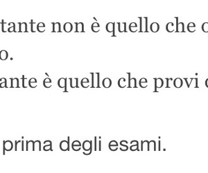 frasi, italiano, and corsa image