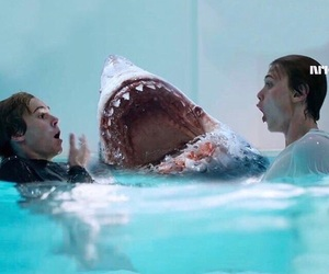evan, shark, and skam image