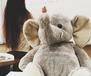 elephant, present, and plushy image