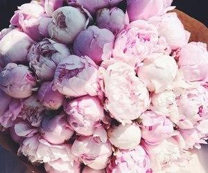 flowers and حلو الورد image