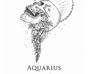 aquarius, astrology, and illustration image