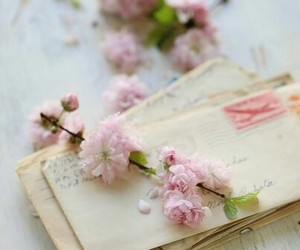 flowers, letters, and pink image