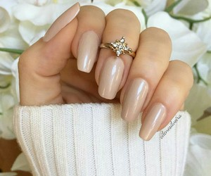 beige and Nude image