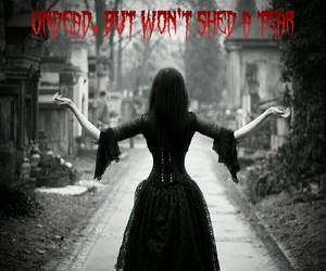 Lyrics, miw, and graveyardshift image