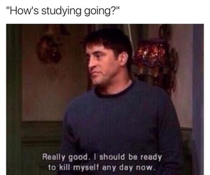 school, funny, and study image