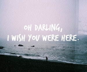 text, darling, and wish image