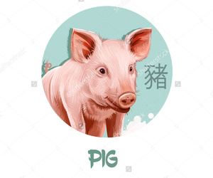 blue, chinese, and pig image